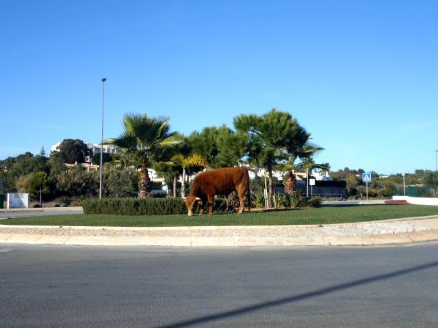 Kreisverkehr am Meia Praia