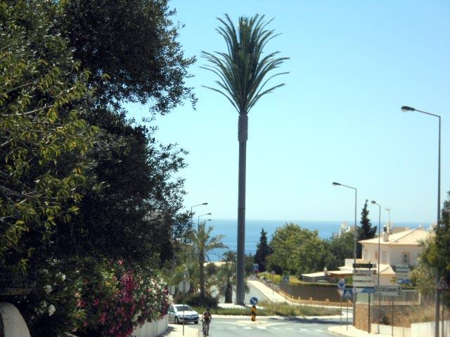 Kreisverkehr in Praia da Luz, Algarve